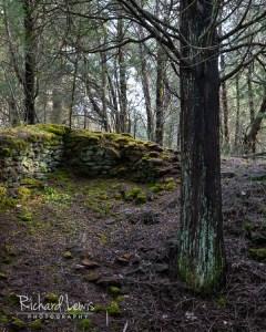 Harrisville Ruins by Richard Lewis