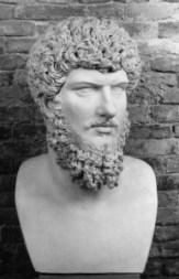 barba griega