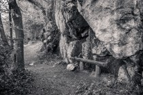 Resting Bench Near Blarney Castle; County Cork