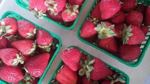 Ontario Fresh Strawberries