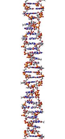 Mona's world of DNA