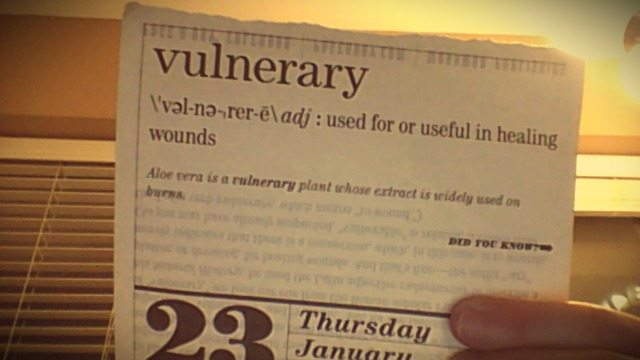 Word of the Day: Vulnerary