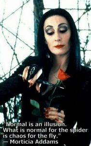 morticia addams normal is an illusion