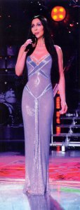 Cher's gown