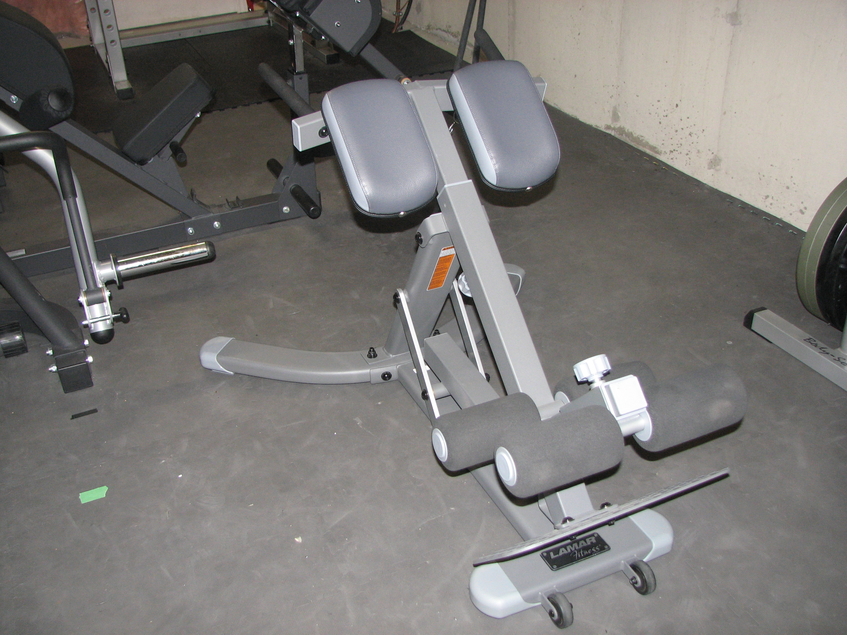 chair gym setup swing brisbane the rich dlin reader beware lamar fitness multi position hyperextension roman