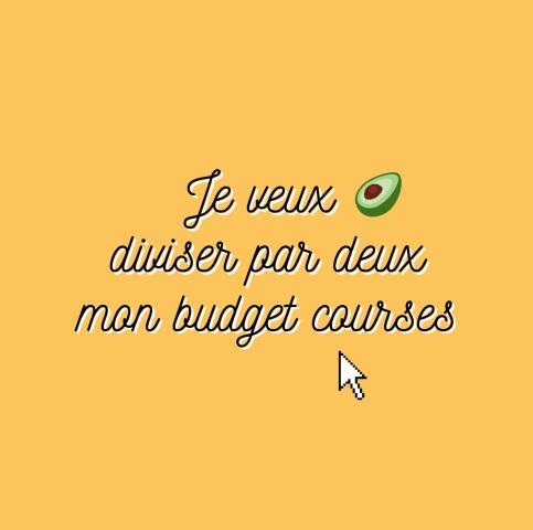 Budget courses