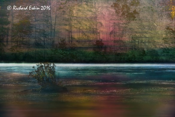 "Composite of a horizontal ""swipe"" of fall trees at a pond, and a tiny island at Hidden Lake on a foggy morning."