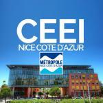 Centre Européen d'Entreprise et d'Innovation