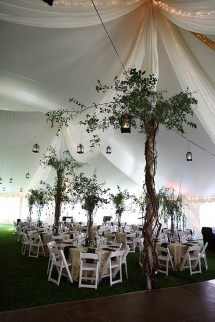draping, lanterns and greenery for wedding