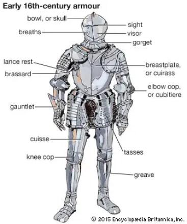 armour anatomy