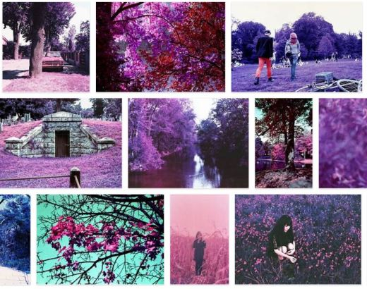 LomoChrome Purple exemples