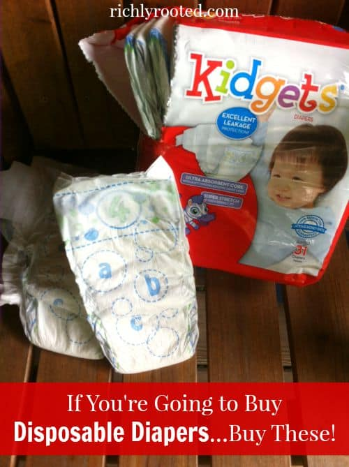 Kidgets Diapers Prices : kidgets, diapers, prices, You're, Going, Disposable, Diapers...Buy, These!, Richly, Rooted