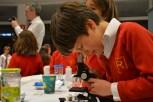 richmond science fair 011
