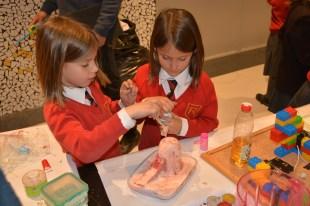 richmond science fair 065
