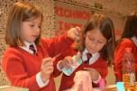 richmond science fair 066