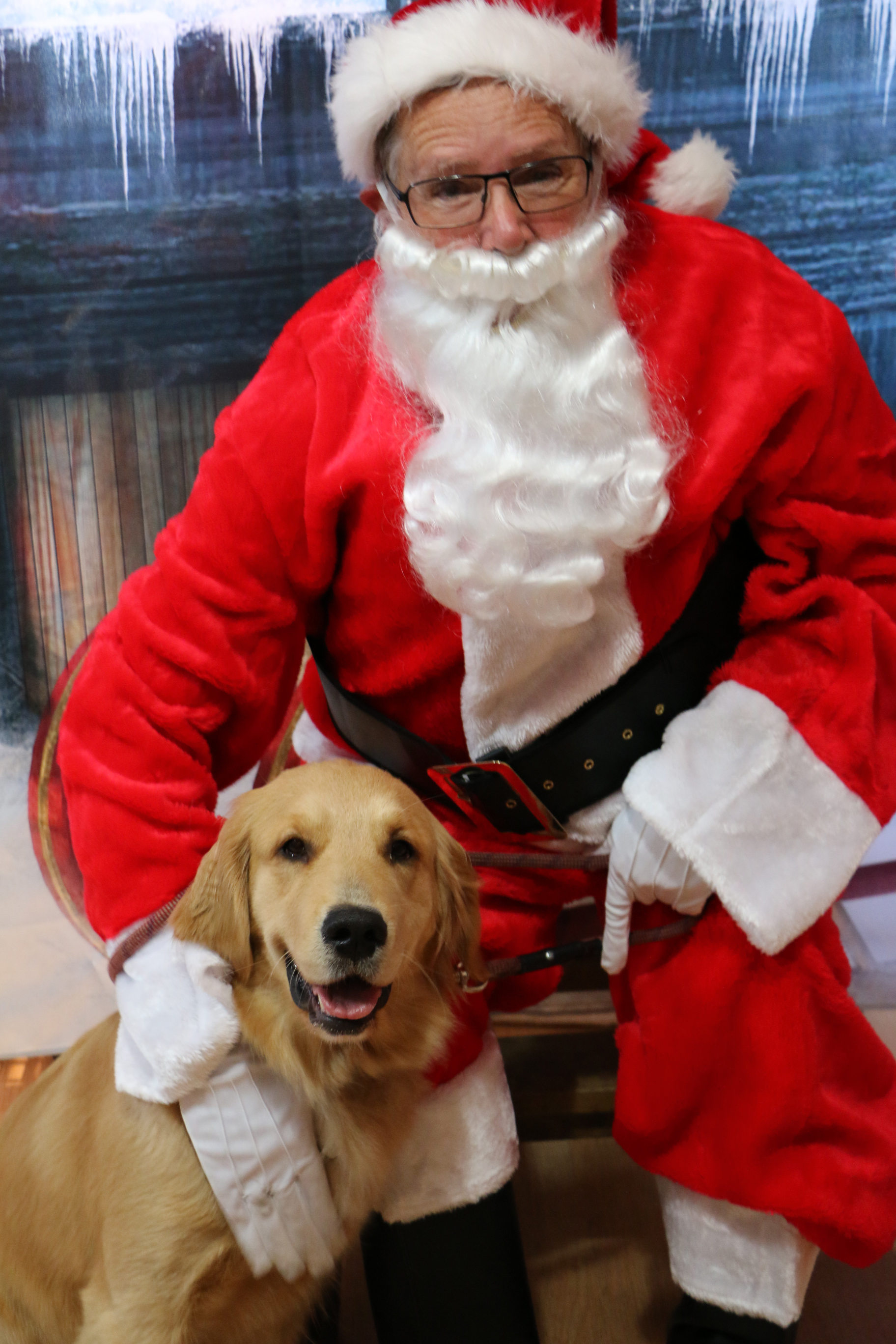 Photos Santa Hears Holiday Wishes From Richmond District Pets Richmond District Blog