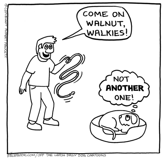 White - COME ON WALNUT, WALKIES! NOT ANOTHER ONE! FACEBOOK.COM/OFF THE LEASH DAILY DOG CARTOONS © COPYRIGHT RUPERT FAWCETT