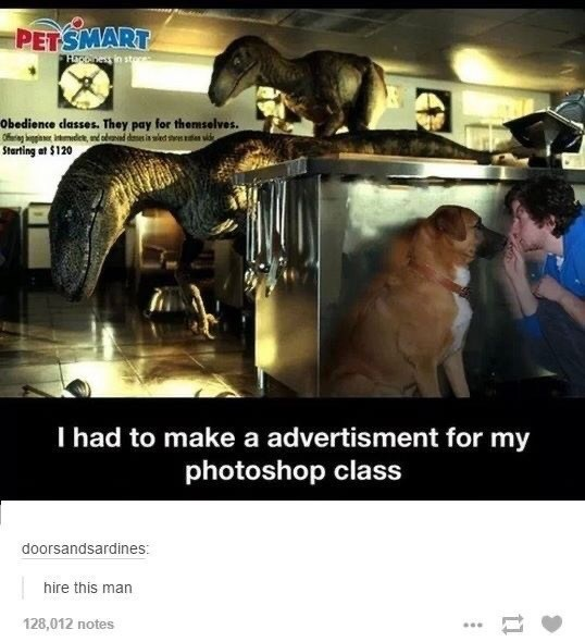Photo caption - PETSMART Hnes in sto Obedience dasses. They pay for themselves. Starting at $120 I had to make a advertisment for my photoshop class doorsandsardines: hire this man 128,012 notes ...