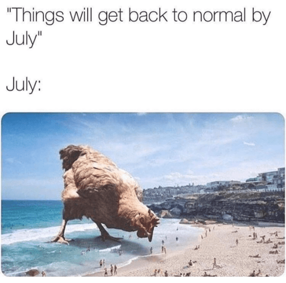 "Adaptation - ""Things will get back to normal by July"" July:"