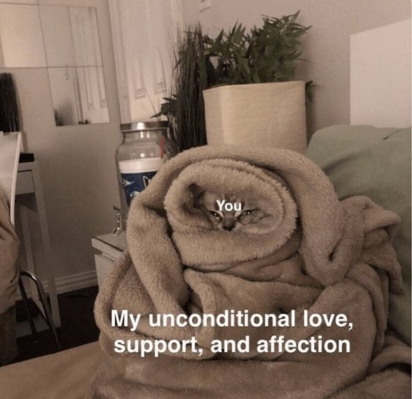 Text - You My unconditional love, support, and affection