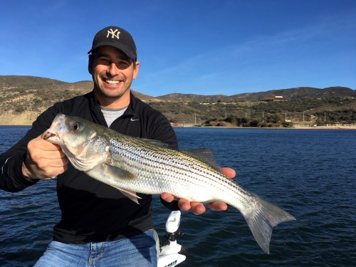Castaic Lake Fishing Guide 09/29//2018