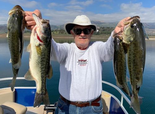 Southern California Bass Fishing Guide's Report 02/23/2020