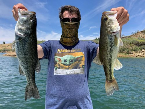 Southern California Bass Fishing Guide's Report 05/16/2020