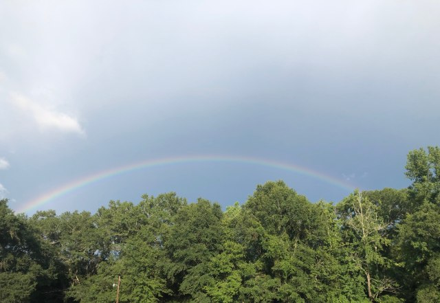 Rainbow in Prattville