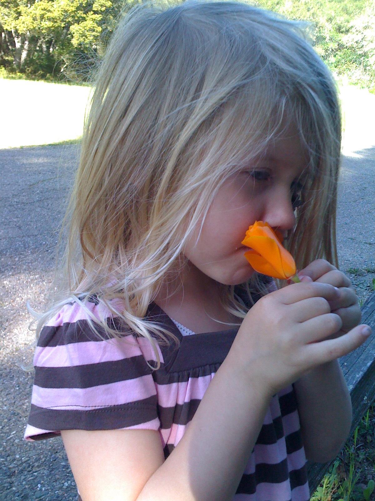 Enjoying the wildflowers