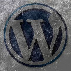 Wordpress 1810479 480