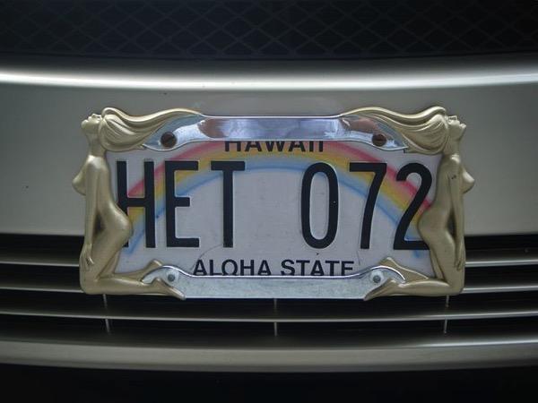 License plate 196423 480
