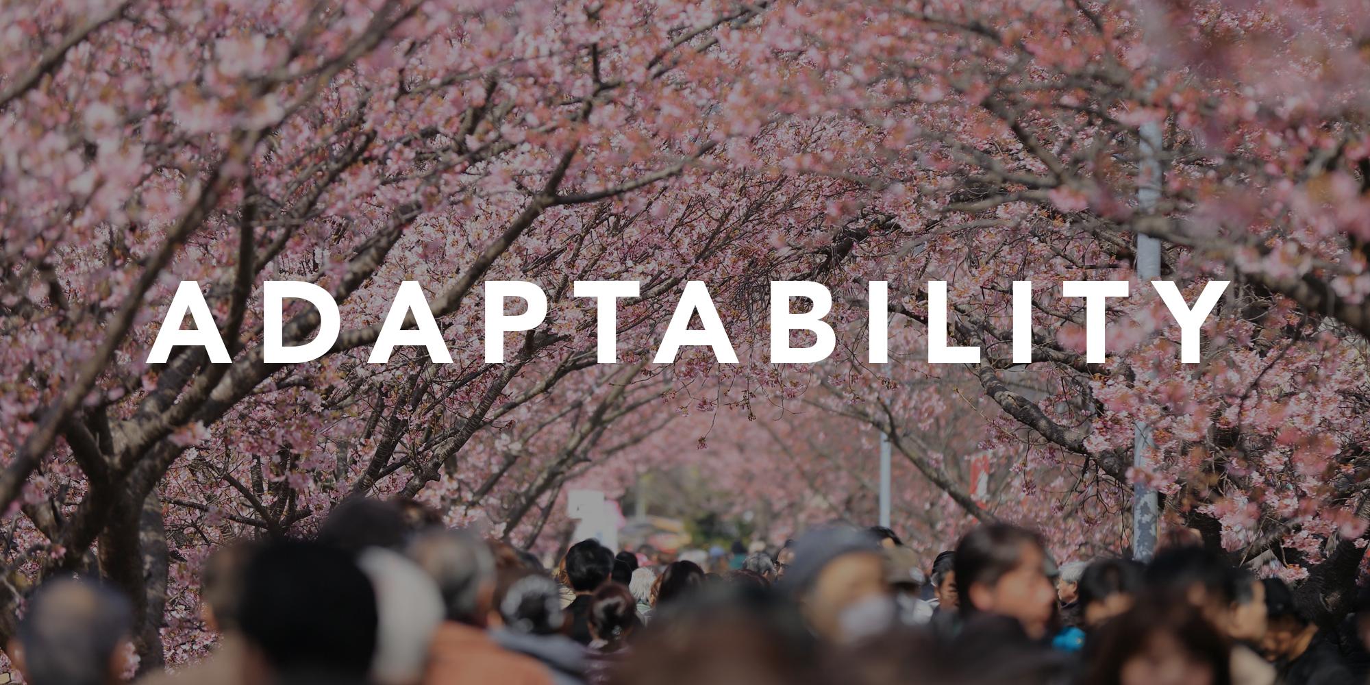 RickJesse-adabtibility-blog