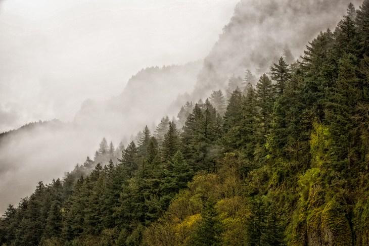 gorge-mist4