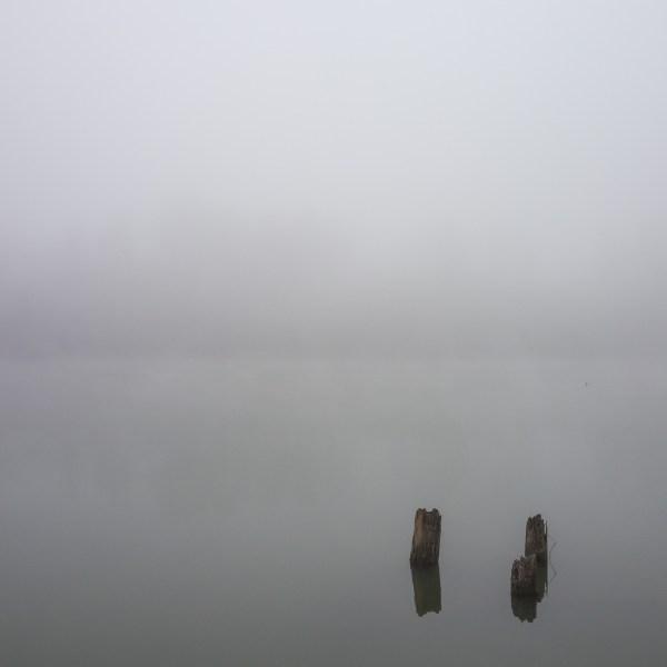 sauvie-fog-study-4-2
