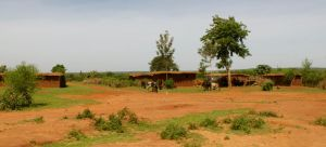 Rural Farm in Tanzania