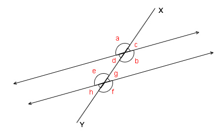 RicksMath Angles and Intersecting Lines