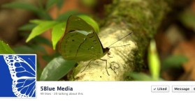 5BlueMedia - Facebook