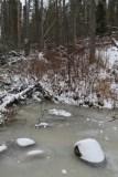 2. Fort McMurray_Birchwood Trails