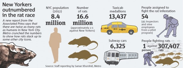 Image result for nyc rat population