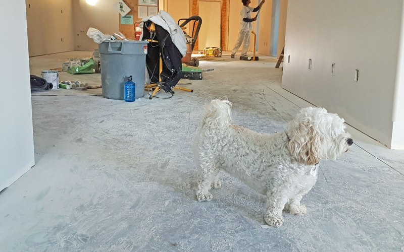 9 Tips That Will Help Your Home Improvement Project Ru