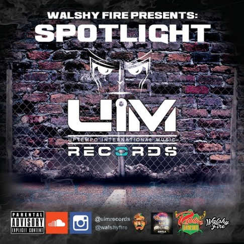WashlyFireSpotlight