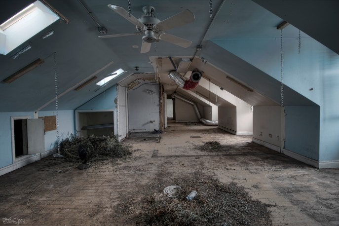 Abandoned Grow Op Mansion
