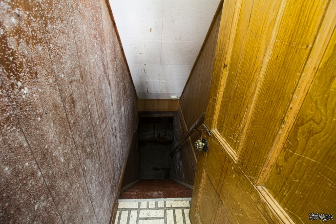 moldy basement