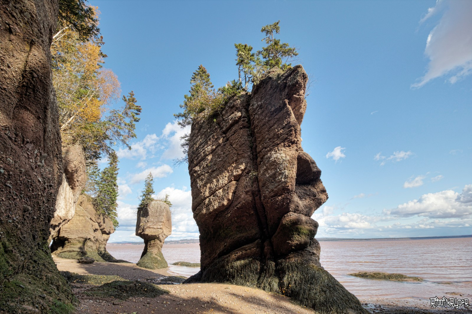 Hopewell Rocks aka The Rocks