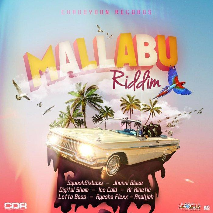 MALLABU RIDDIM - CHADDYDON RECORDS
