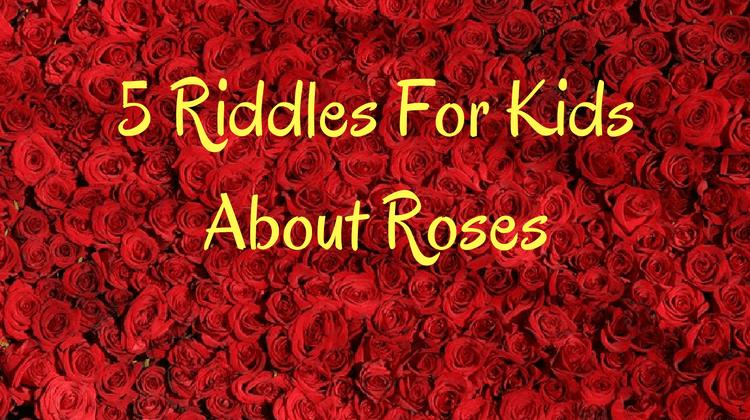 Roses Riddles