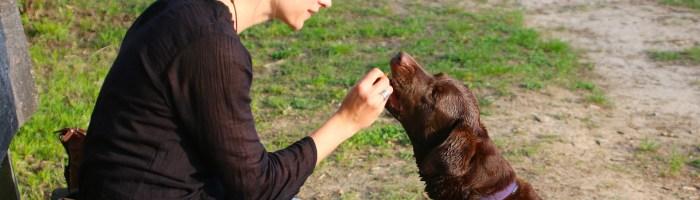 Une femme et son chien