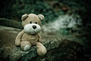 Plan du blog Ride Your Life : un ourson en peluche tout mimi perdu dans la forêt