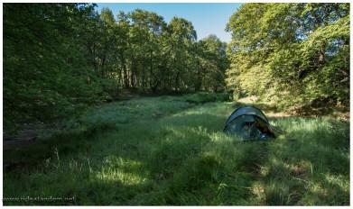 Sieht nach einem ziemlich netten Schlafplatz aus, ist es auch - dafür aber extra feucht, so imhohen Gras, Schatten und direkt neben einem Bach