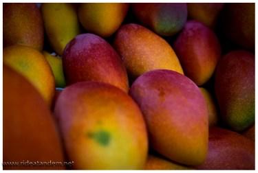 Fast direkt neben unserem Hotel gibt es einen tollen Markt mit leckersten Obst, wie hier Mangos